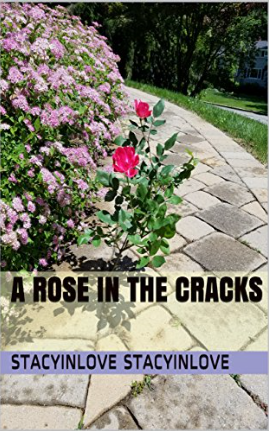 A Rose in the Cracks cover.jpg_0.png