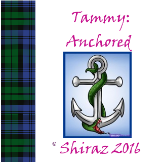 anchored_tartan.png